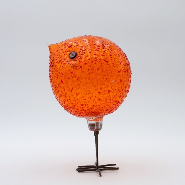 Orange vistosi bird – Alessandro Pianon – Unforget_B09_67 – 007